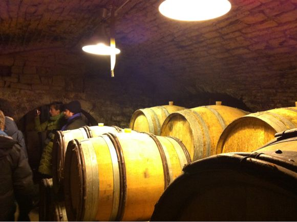 Real Wine Tour - Day Two - Chablis & Riceys part deux
